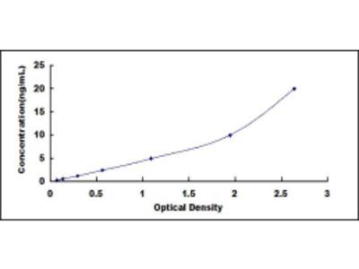 ELISA Kit for Opticin (OPTC)