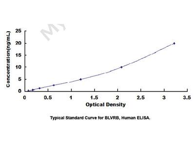 ELISA Kit for Biliverdin Reductase B (BLVRB)