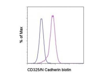 CD325 antibody (biotin)