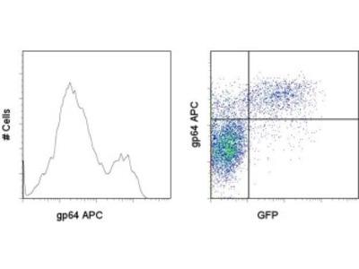 gp64 antibody (allophycocyanin)