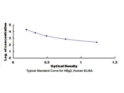 Human Hemoglobin Gamma 2 (HBg2) ELISA Kit