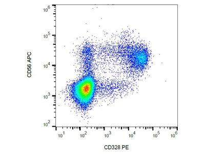 anti CD328 / SIGLEC7