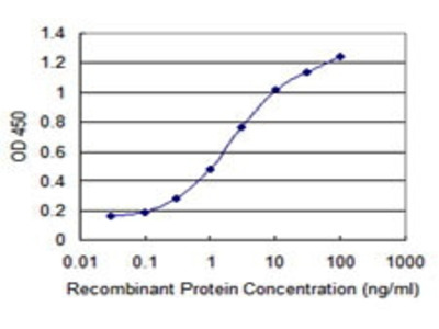 Mouse Anti-TAF7L Antibody