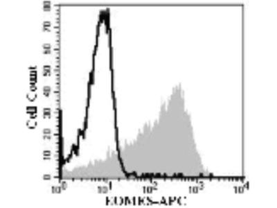 Mouse Anti-EOMES Antibody (APC)