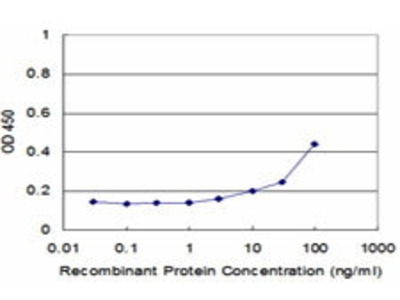 Mouse Anti-SMARCA5 Antibody
