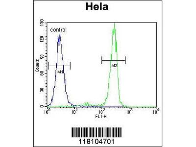 Rabbit Anti-MED7, ID Antibody
