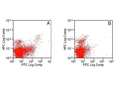 Mab Rt x mouse CD283 (TLR3) antibody
