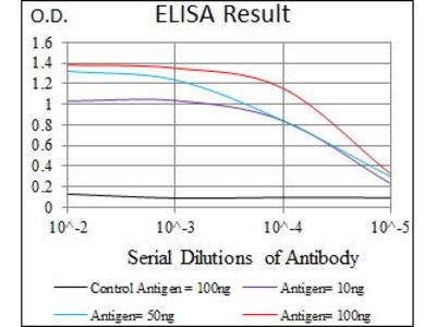 Mouse Anti-NRCAM Antibody