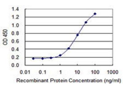 Mouse Anti-Collapsin Response Mediator Protein 4 Antibody