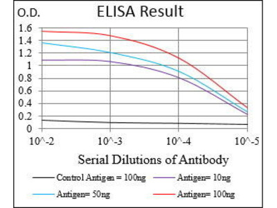 Mouse Anti-ABCB1 Antibody