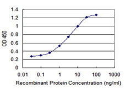 Mouse Anti-LYST Antibody