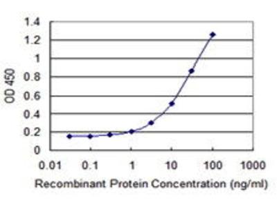 Mouse Anti-EXOSC7 Antibody