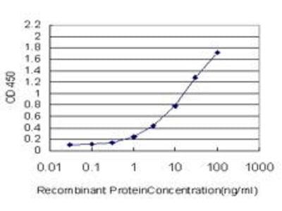 Mouse Anti-JAM2 Antibody