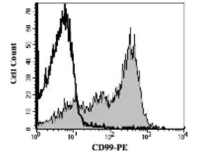 Goat Anti-CD99 Antibody (PE)