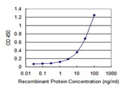 Mouse Anti-GAL3ST1 Antibody