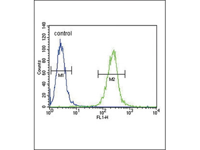 Rabbit Anti-SPINK5, NT Antibody