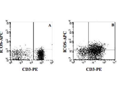 Mouse Anti-ICOS Antibody (APC)