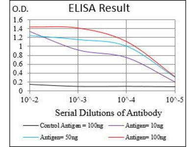 Mab Mo x human B2M (B2 Microglobulin) antibody