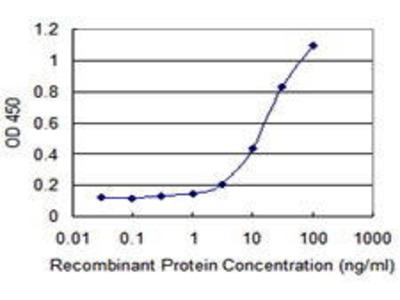 Mouse Anti-CCL1 Antibody