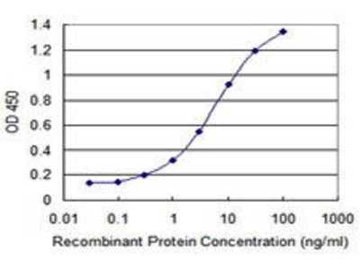 Mouse Anti-IL4R Antibody