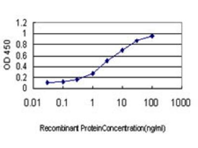 Mouse Anti-LLGL1 Antibody
