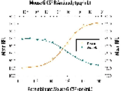 Rat Anti-G-CSF Receptor Antibody