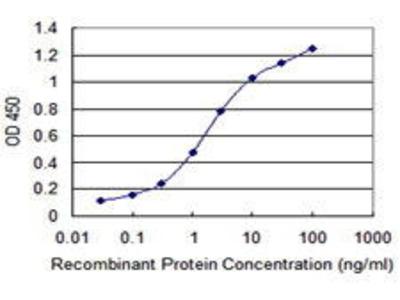 Mouse Anti-PMPCB Antibody