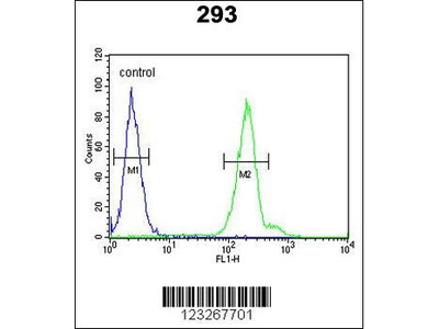 Rabbit Anti-CRELD2, CT Antibody