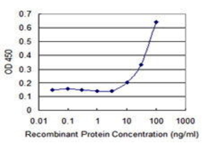 Mouse Anti-CPA3 Antibody
