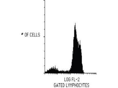 CD2 antibody