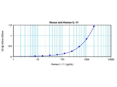 anti Interleukin-11 / IL11