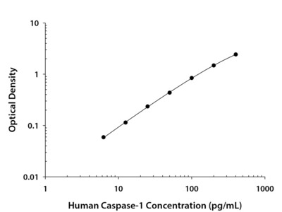 Human Caspase-1 / ICE Quantikine ELISA Kit
