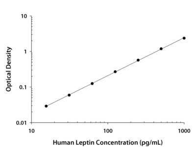 Leptin / OB ELISA