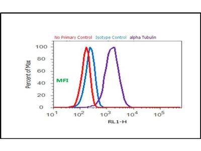 Good IgG (H+L) secondary antibody, Alexa Fluor® 488 conjugate