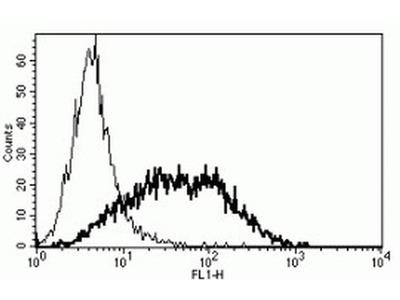 CD25 Monoclonal Antibody (B-B10)