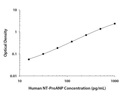 NT-Pro Atrial Natriuretic Peptide / ANP ELISA