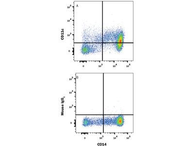 CD11c APC-conjugated Antibody