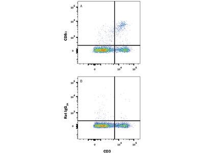 CD8 APC-conjugated Antibody
