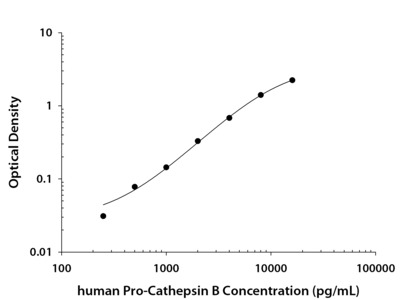 Pro Cathepsin B ELISA
