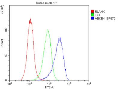 Anti-ABCB4 Picoband Antibody