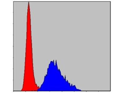 Mouse Monoclonal Troponin I type 2 (fast skeletal) Antibody