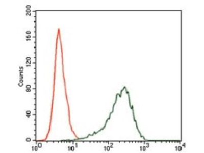 Mouse Monoclonal SRY Antibody