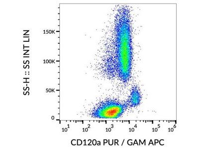 TNF RI / TNFRSF1A Antibody (H398) - Azide Free