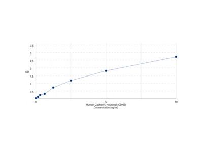 Human Cadherin, Neuronal (CDH2) ELISA Kit