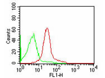CD47 Fluorescein Antibody