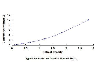 ELISA Kit for Uridine Phosphorylase 1 (UPP1)