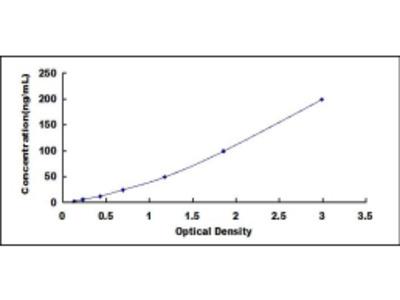 ELISA Kit for Lactate Dehydrogenase C (LDHC)