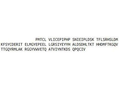 Recombinant Hypoxia Inducible Factor 1 Alpha (HIF1a)