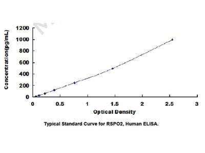 ELISA Kit for R-Spondin 2 (RSPO2)