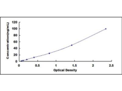 ELISA Kit for Histone Deacetylase 2 (HDAC2)